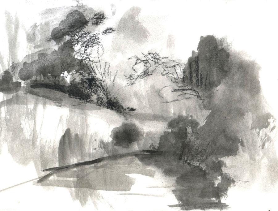 Landscape, 2010, Ink on paper, 16x22