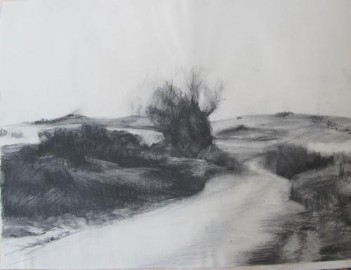 Landscape-2010-Charcoal-on-paper-45x61